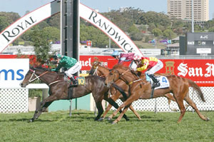 Magic Marvo - Stan Fox Stakes on 28th September 2002