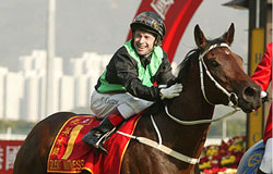 Champion Sprinter SILENT WITNESS after winning 2003 Hong Kong Sprint at Sha Tin